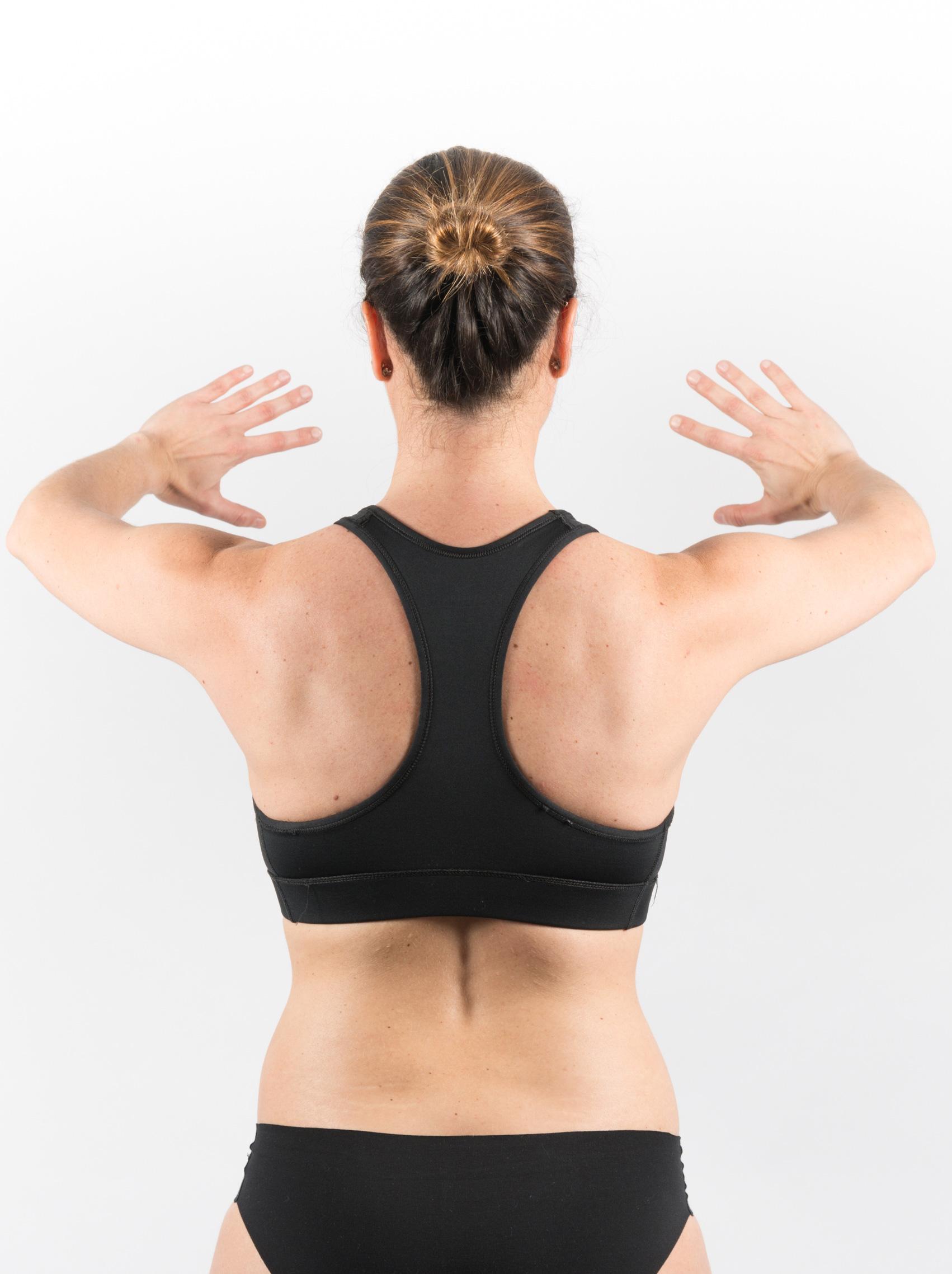 Omóplatos, fisioterapia deportiva